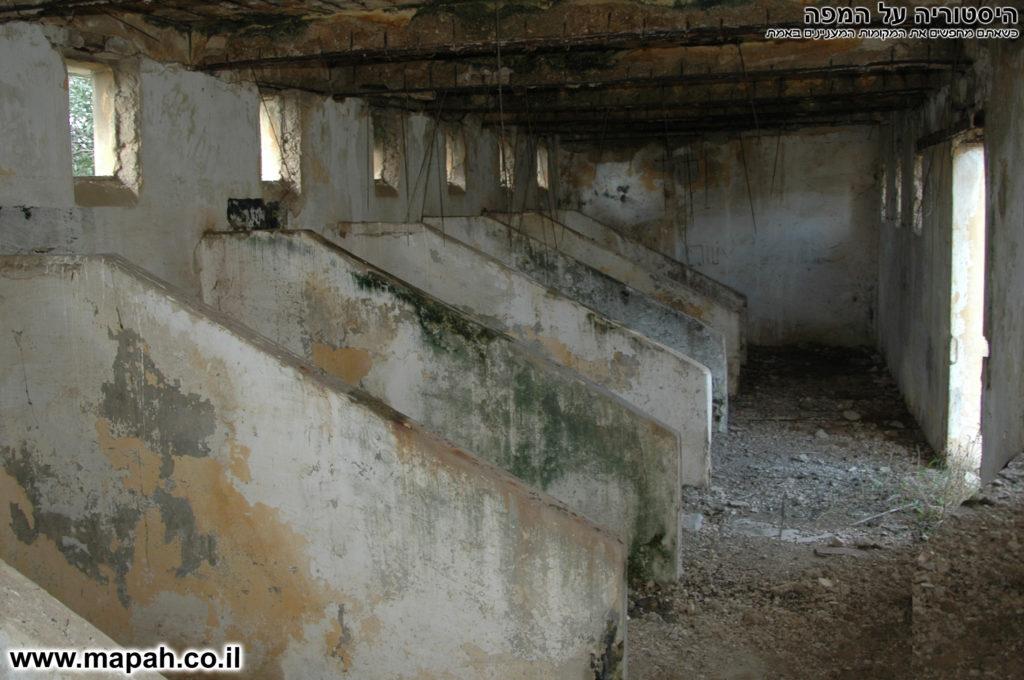 אורוות הסוסים במשטרת באטאני - צילום: אפי אליאן