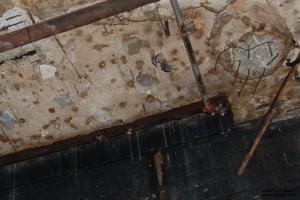 """עטלפים באולם """"המערה החשמלית"""" לשעבר - צילום: אפי אליאן"""