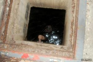 מאגר המים המתוקים מתחת לדיזנגוף סנטר - צילום: אפי אליאן