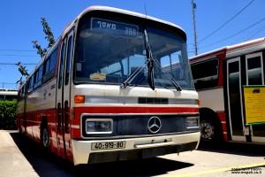 אוטובוס מדגם מרצדס O-303 מבין המאות ששירתו בכבוד בחברת אגד - צילום: אפי אליאן