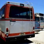החלק האחורי של חניון האוטובוסים במוזיאון אגד - צילום: אפי אליאן