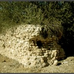 מבנה קבר השיח' במושב עזריקם - צילום: אפי אליאן
