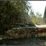 קבר השי'ח במושב עזריקם - צילום: אפי אליאן