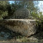 כיפת מבנה קבר השיח' במושב עזריקם - צילום: אפי אליאן
