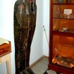 """כיסוי ארון הקבורה של המומיה """"אלכס"""" במכון האפיפיורי למחקר - צילום: אפי אליאן"""