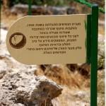 שילוט בסמוך למערת הנטיפים - צילום: אפי אליאן