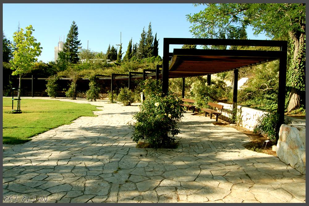 פינת ישיבה מוצלת בפינת גן מהאוול לורדים בירושלים - צילום: אפי אליאן