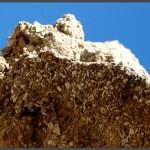 חומרי הייסוד של לבני הבנייה במסגד כפר איסדוד