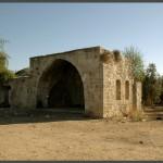 קבר השיח אבו אל קאבל בפרדס הסמוך לתל איסדוד