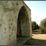 מבט ממזרח למערב - קבר השיח אבו אל קאבל