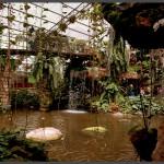 האולם הטרופי הראשי של אוטופיה בקיבוץ בחן