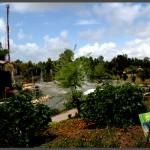 מבט אל הגן הבוטני של פארק אוטופיה