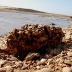 אבנים וחלוקי נחל בשפך נחל אלכסנדר לים התיכון