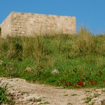 מבנה החווה העתיק בשמורת הטבע של נחל אלכסנדר
