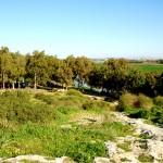 מבט אל אפיק נחל אלכסנדר מחורבת סמארה במעלה השמורה