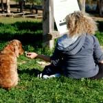 החבר הטוב ביותר של האדם , מומלץ לביקורי משפחות