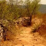 הכניסה לשביל הטיול ההיקפי בשמורת הסטף