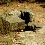 גת ופסיפס שנמצאו בסמוך לשרידי הכנסייה העתיקה