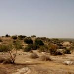הכניסה לגן הלאומי בית גוברין תל מרשה