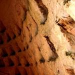 חריצי גידול יונים במערת קולומבריום בגן הלאומי תל מרשה