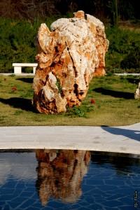 הסלע המשתקף במים באתר אסון המסוקים
