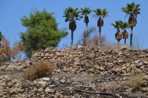 """שרידי קיר שהיה ככה""""נ חלק ממבנה או בית בתל יבנה"""