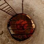 דרך העברת חביות היין למרתף היקב במקווה ישראל