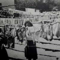 נשות המכבסה בתמונה מקורית ממכון איילון