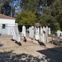 חצר המכבסה ותליית הכביסה במכון איילון