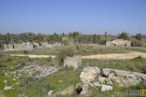 שרידי מבנים בריטים שהשתייכו לשדה התעופה של חיל האויר הבריטי R.A.F בבארי - צילום: אפי אליאן