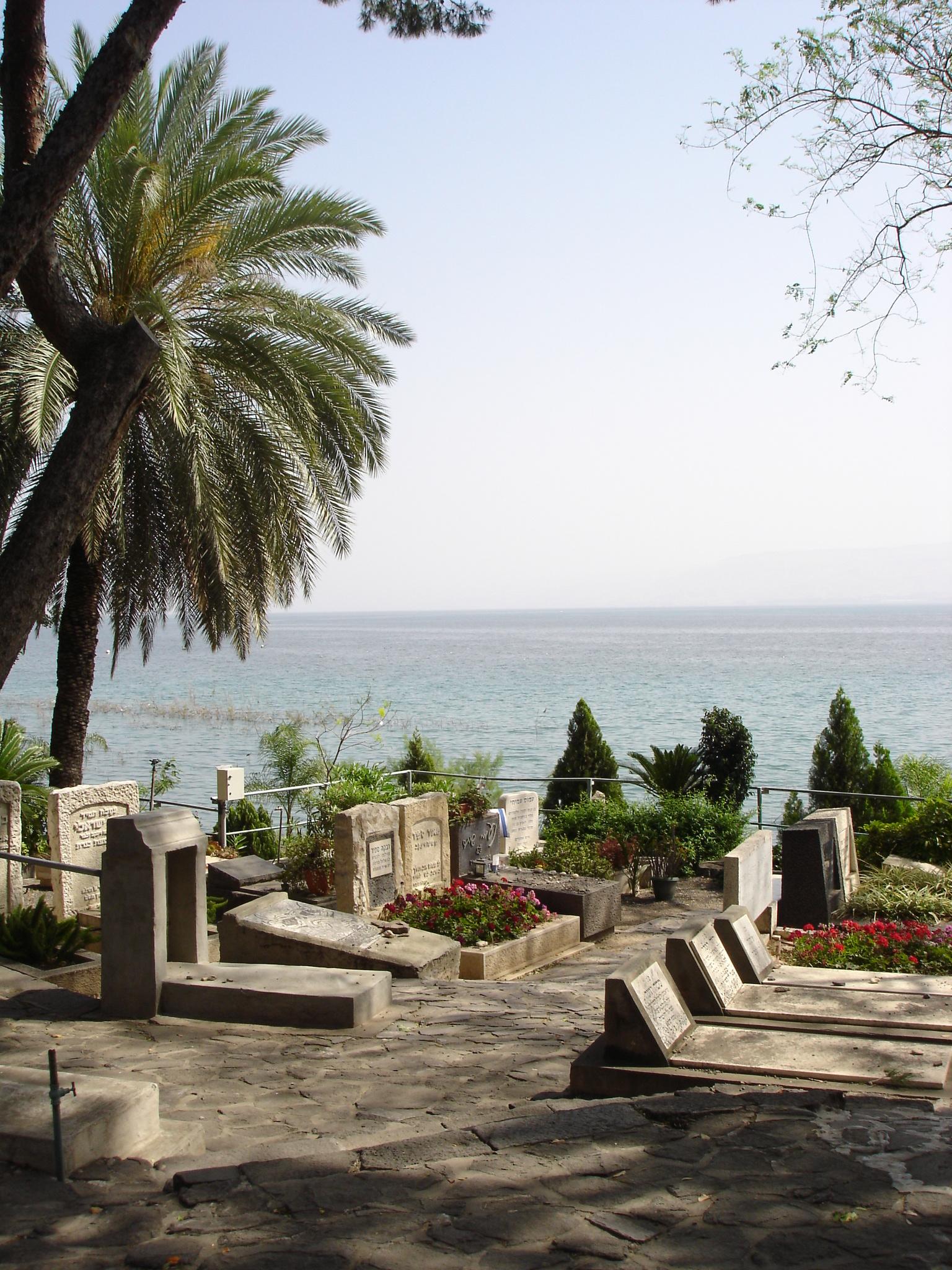 אחוזת קבר נעמי שמר בבית העלמין כנרת - צילום: Teqoah