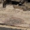 רצפת הפסיפס במתחם הסיגמה