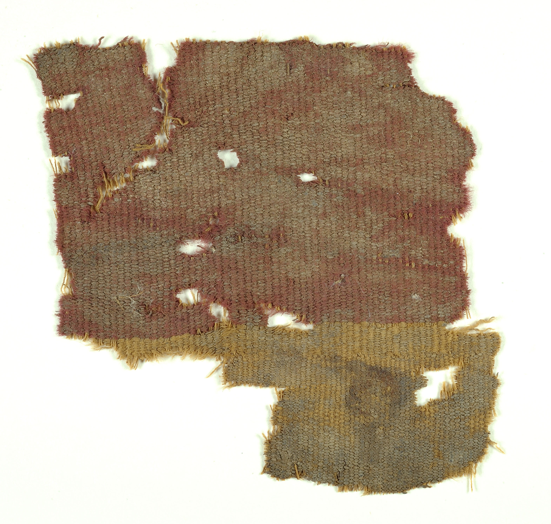 פיסות האריג שנחשפו במדבר יהודה - צילום: קלרה עמית, באדיבות רשות העתיקות