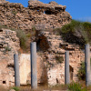 שרידי כנסיית סנטה מריה וירידיס בתחומי הגן הלאומי אשקלון - צילום: אפי אליאן