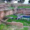 חפירות ארכאולוגיות שמבוצעות בימים אלו בגן הלאומי אשקלון - צילום: היסטוריה על המפה