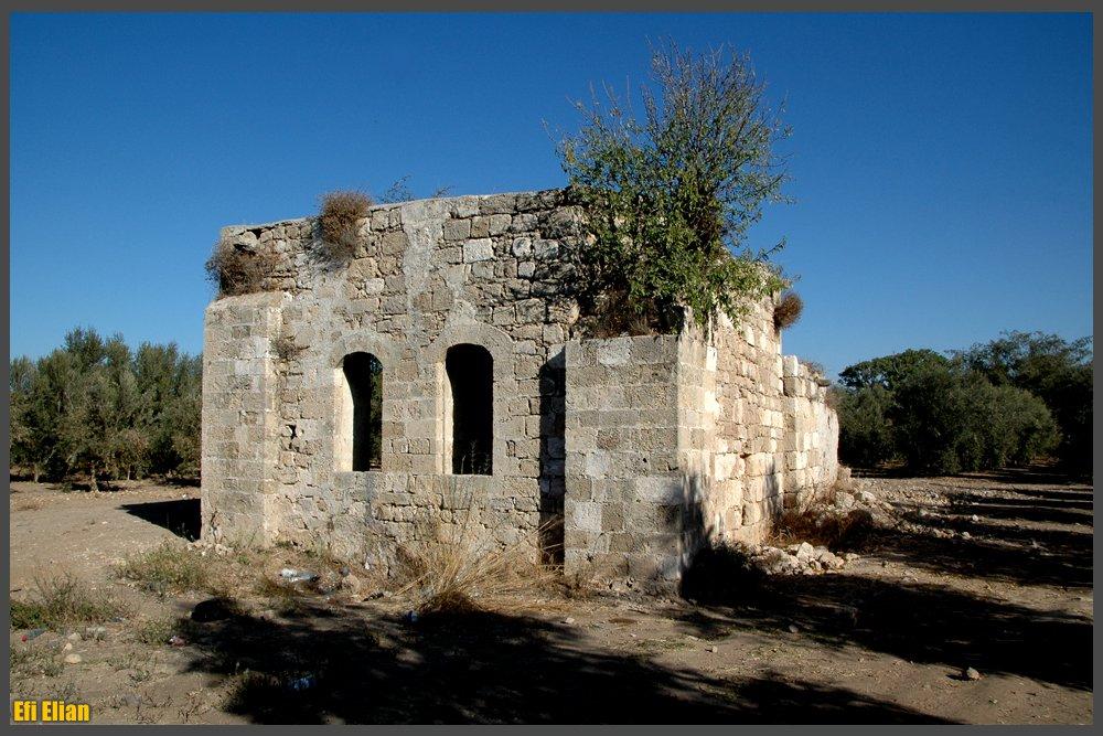 חלקו המערבי - היכל התפילה - צילום: אפי אליאן