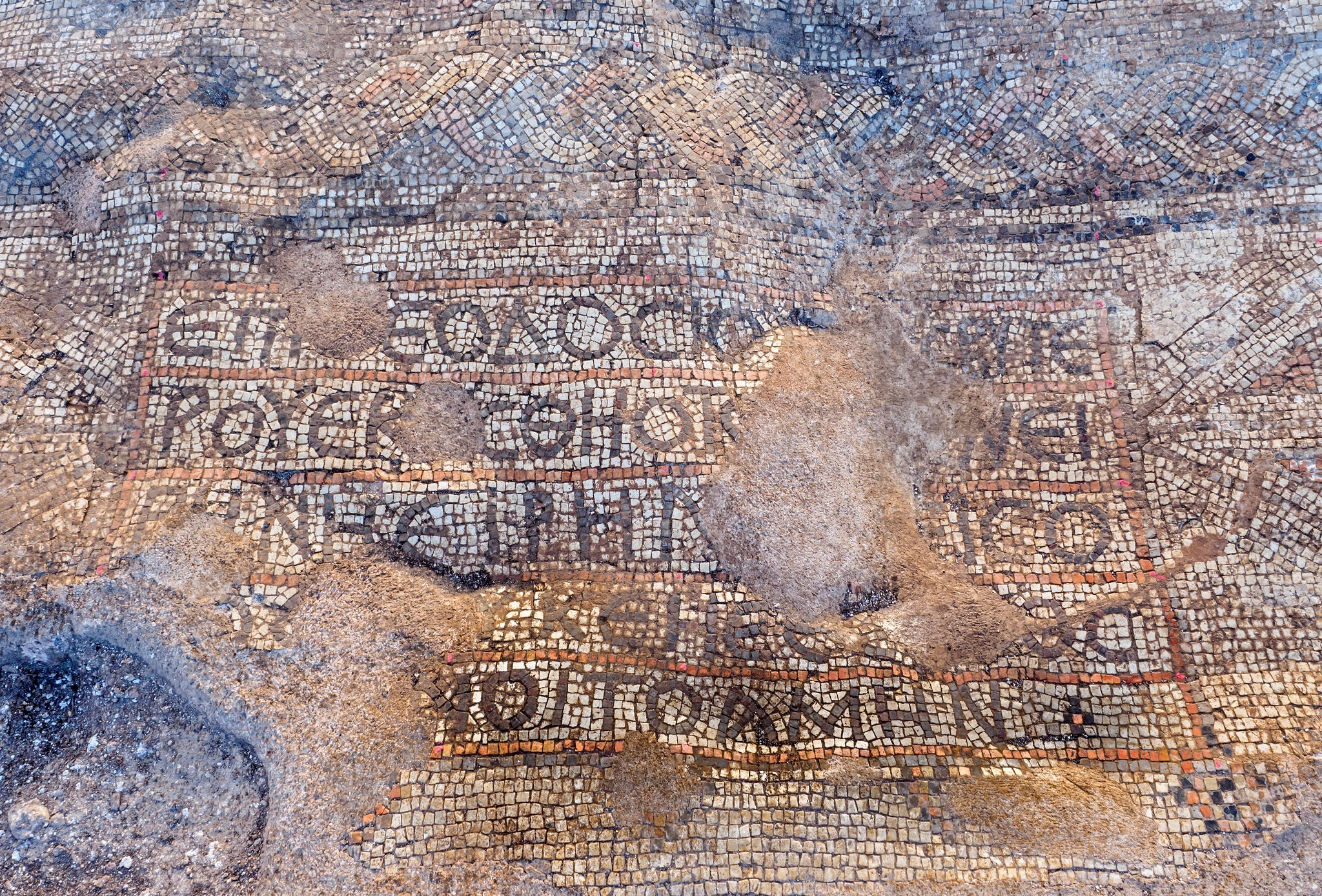 תמונות הפסיפס שנתגלה. צילום: אסף פרץ