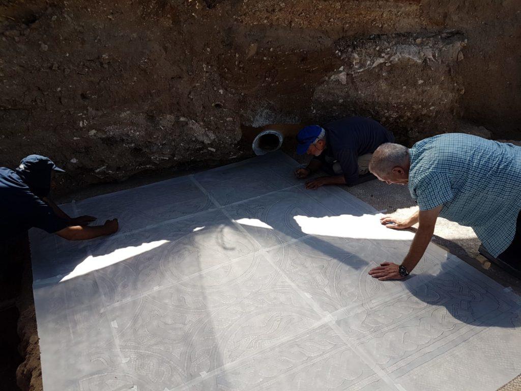 מומחי השימור ברשות העתיקות מכינים את הפסיפס להוצאה מהשטח לצורך שימורו. כשיוקם מרכז המבקרים הוא יוצג בו. צילום: ראלב אבו דיאב