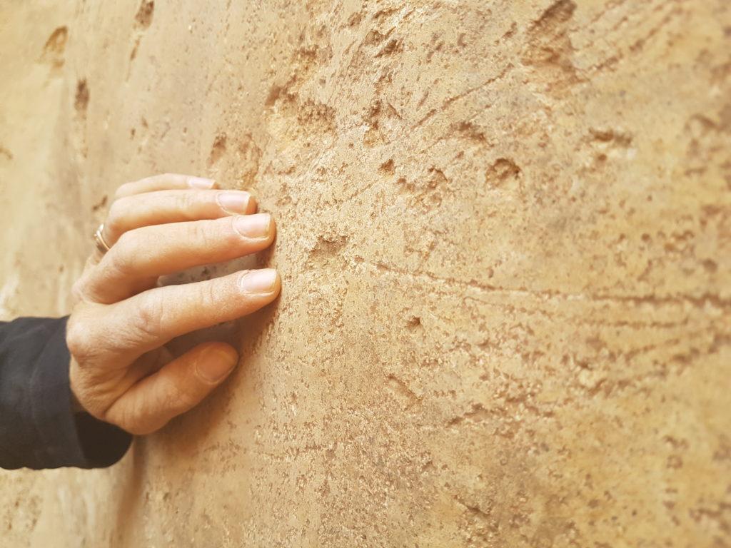 מהממצאים בבור המים - דוידה אייזנברג - דגן, רשות העתיקות
