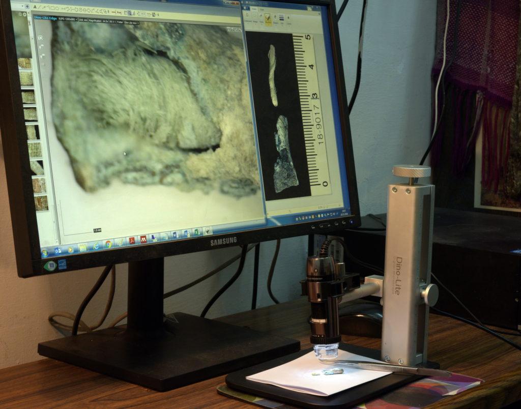 """ד""""ר סוקניק בוחנת את פתילת הפשתן משבטה  צילום: קלרה עמית"""
