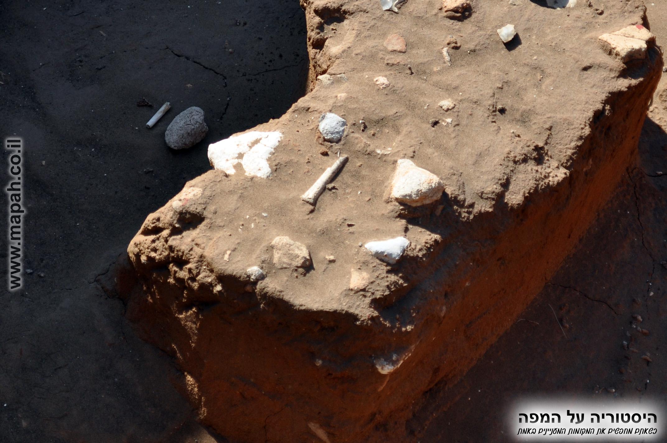 מקטע רצפה באחד מהמבנים ועצם מוארכת במרכז
