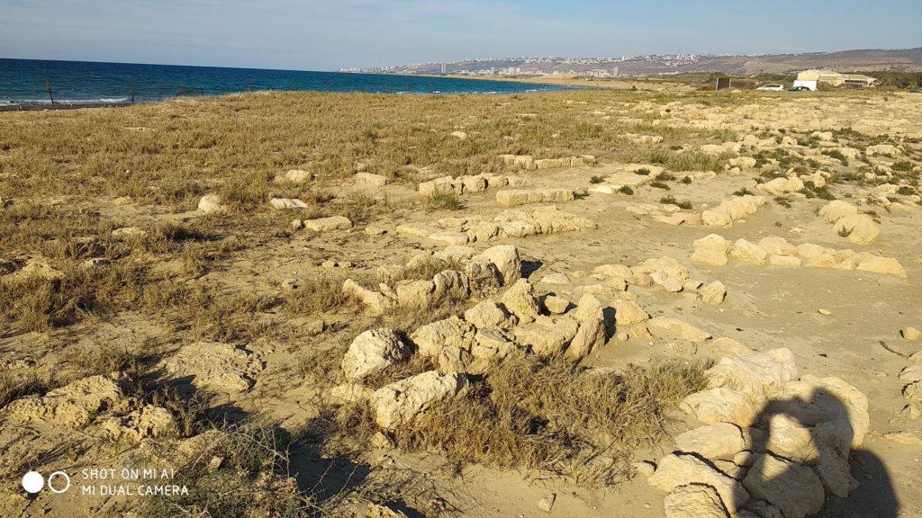 חלק משטח בית הקברות הצלבני בעתלית - צילום: אפי אליאן