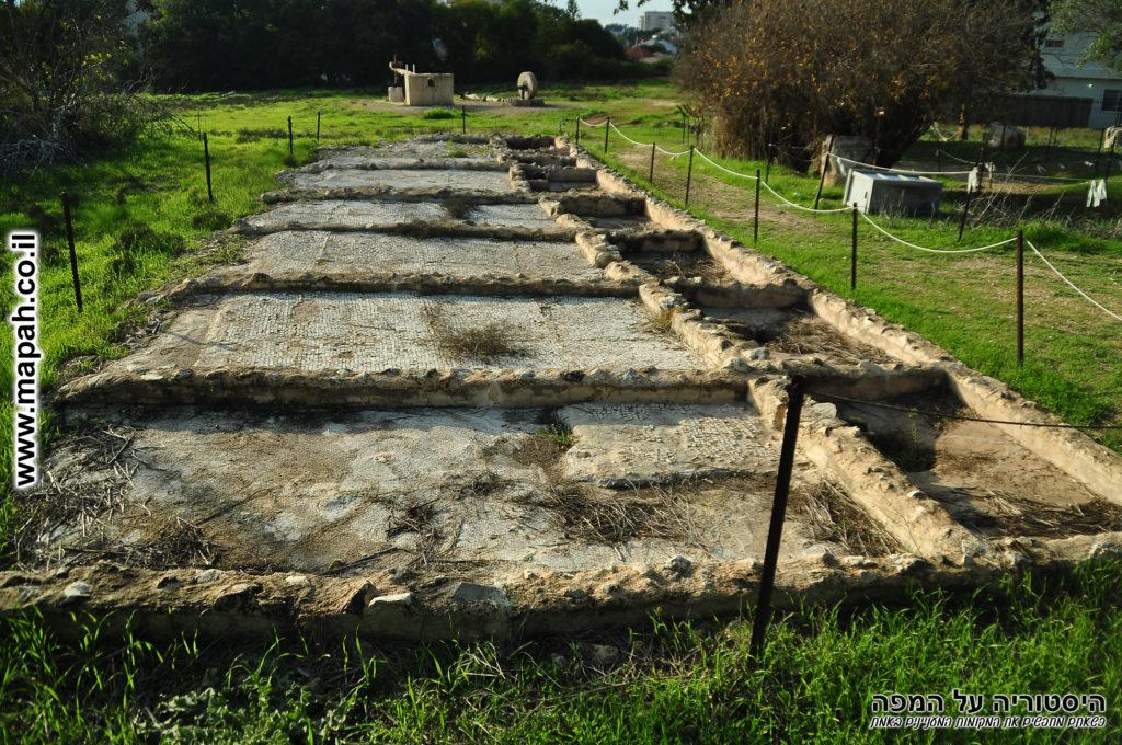 משטחי פסיפס גן ארכיאולוגי כפר סבא תל כפר סבא - צילום: אפי אליאן
