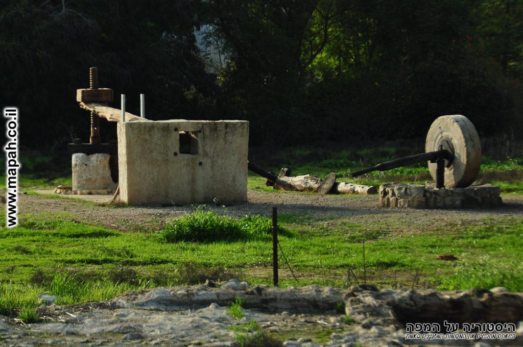 בית בד משוחזר בתל כפר סבא - צילום: אפי אליאן