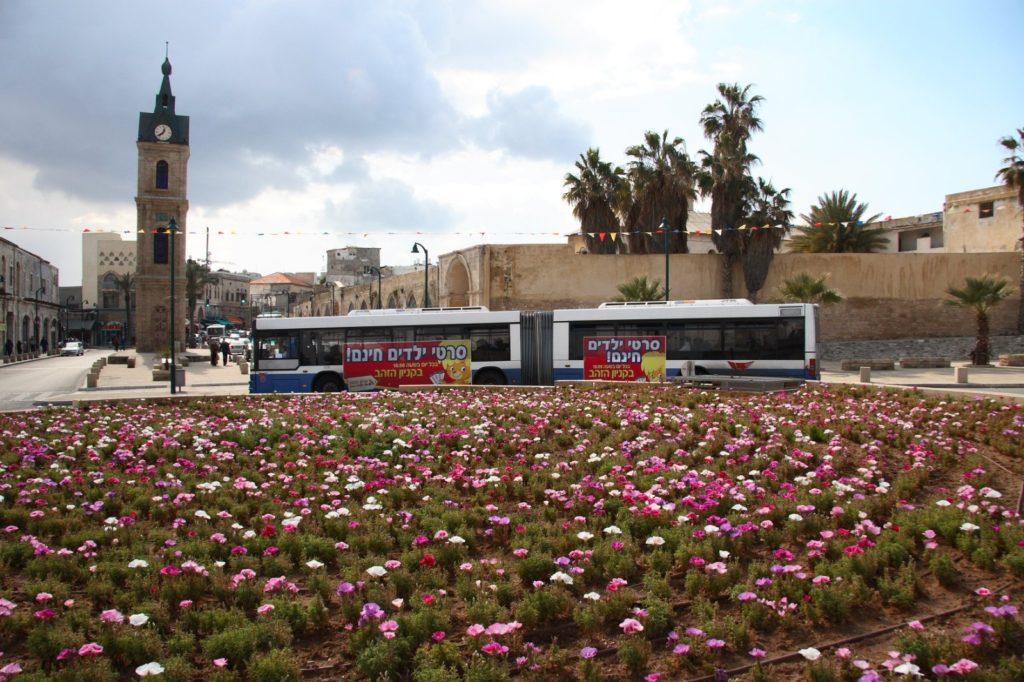 כיכר מגדל השעון יפו כיום - צילום באדיבות: אדיר יוסף