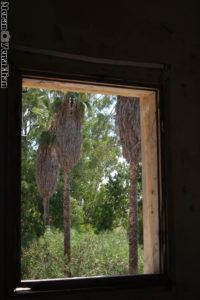 מחלון קומה 2 בניין צפוני לדרום - פנים החצר - צילום: מורן יונה אליאן