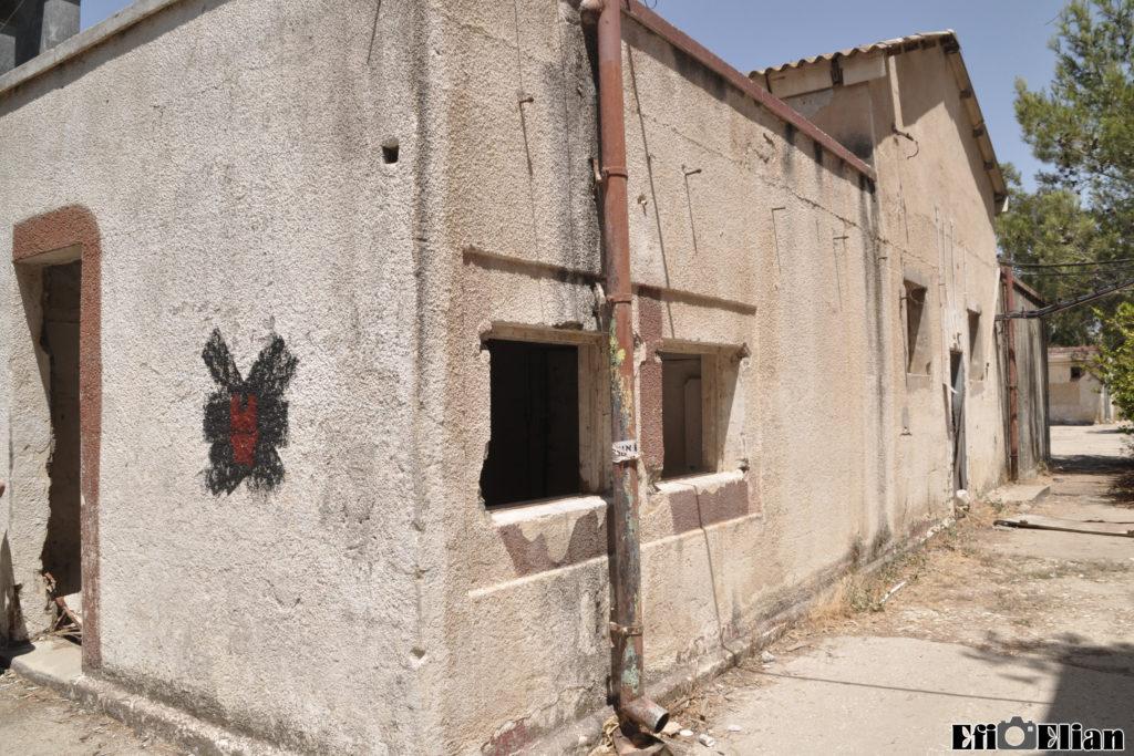 חדרי השירות של המבנה התפעולי - צילום: אפי אליאן