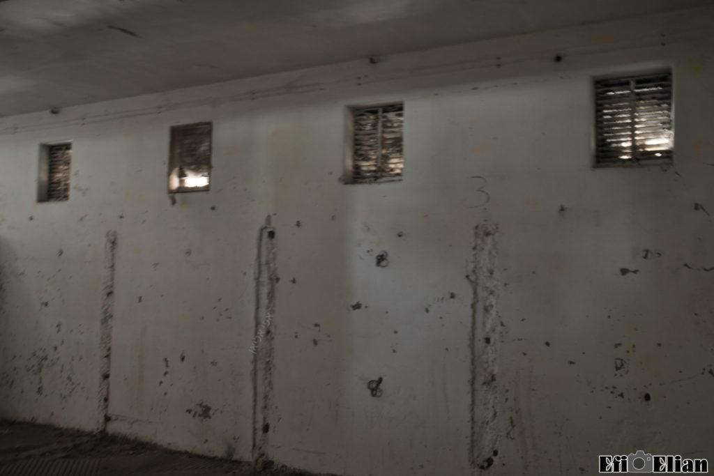 חלק מהמחיצות נהרסו עם השנים באורוות משטרת בית גוברין - צילום: אפי אליאן