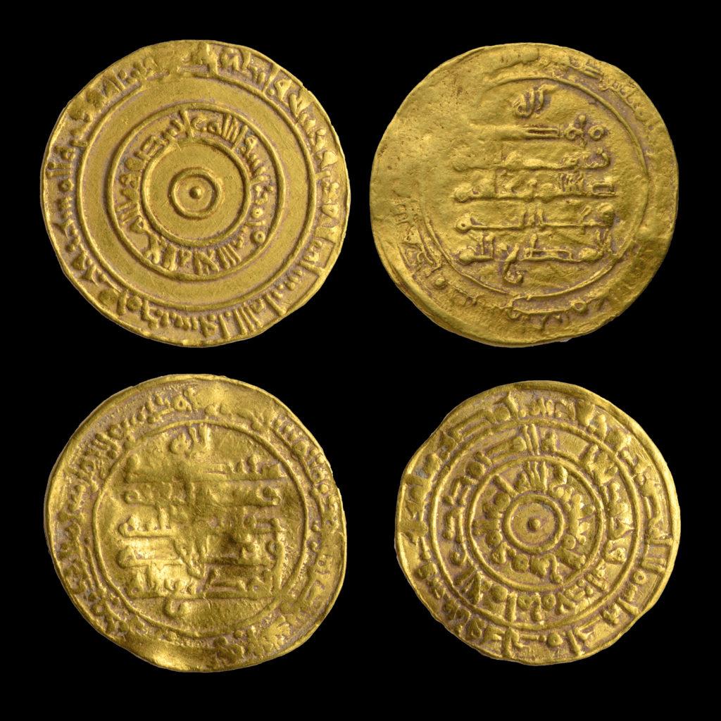 הפכית ומטבעות הזהב. צילום: דפנה גזית