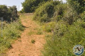 השביל העולה אל מתקן אספקת המים המנדטורי שעל הר אגר - צילום: אפי אליאן